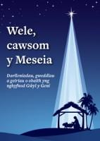 wele-cawsom---sampl-1